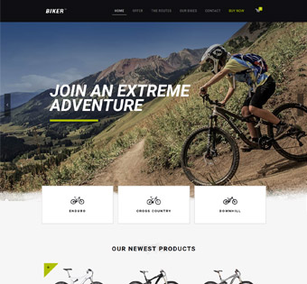 Website Design Theme Samples 24