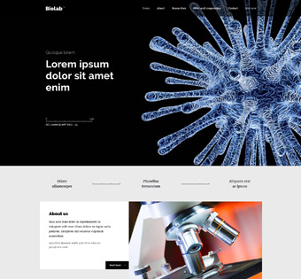 Website Design Theme Samples 262