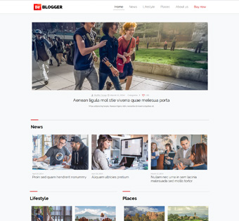 Website Design Theme Samples 260