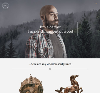 Website Design Theme Samples 247