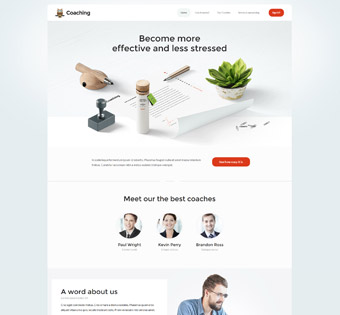 Website Design Theme Samples 240