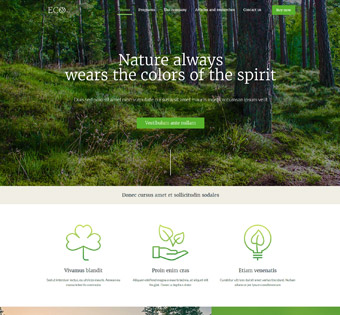 Website Design Theme Samples 214