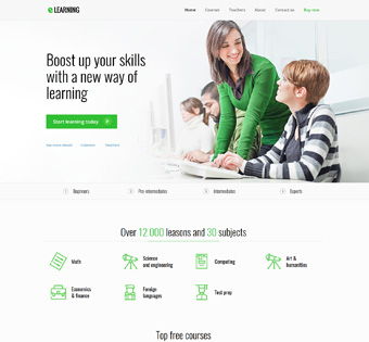 Website Design Theme Samples 213