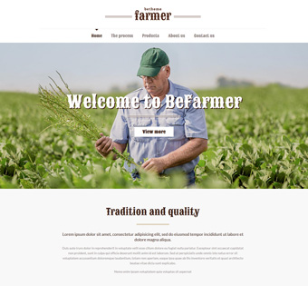 Website Design Theme Samples 204