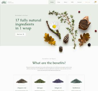 Website Design Theme Samples 183