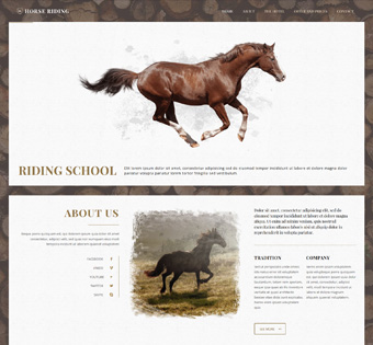 Website Design Theme Samples 179