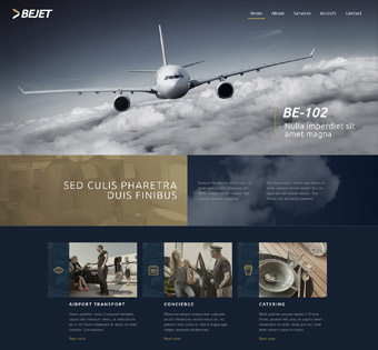 Website Design Theme Samples 166