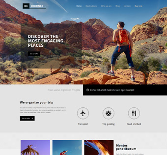 Website Design Theme Samples 163