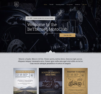 Website Design Theme Samples 136