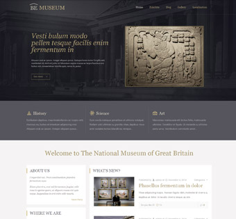 Website Design Theme Samples 132