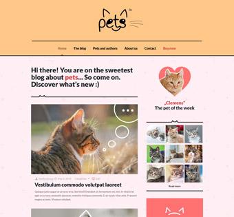 Website Design Theme Samples 121