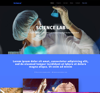 Website Design Theme Samples 94