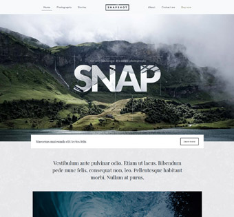 Website Design Theme Samples 80