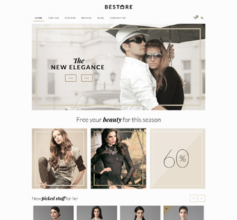 Website Design Theme Samples 71