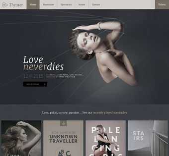 Website Design Theme Samples 61