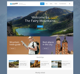 Website Design Theme Samples 58