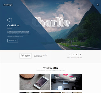 Website Design Theme Samples 38