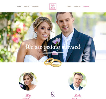 Website Design Theme Samples 35