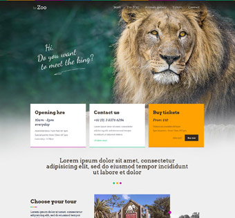 Website Design Theme Samples 27